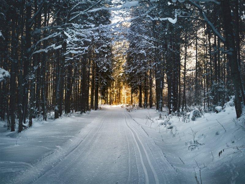 Cross Country Ski Trail   Simon Matzinger