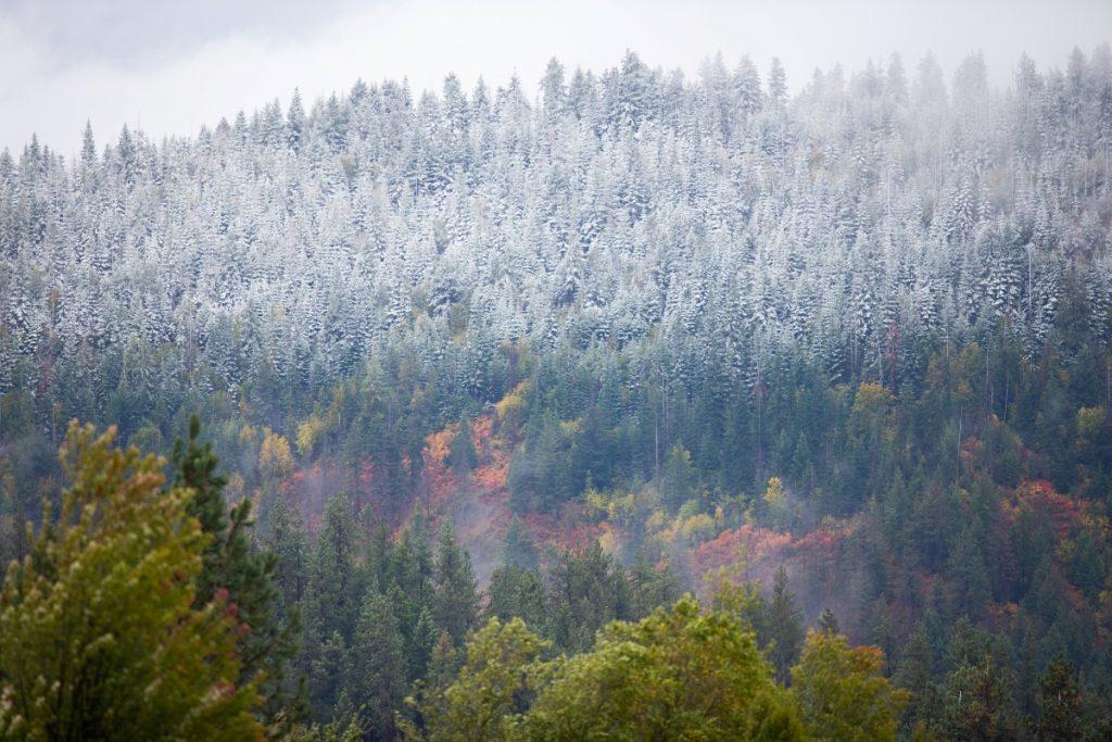 Coeur d'Alene Idaho Winter